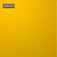 Grenadeers EP Hoes Gitaristen